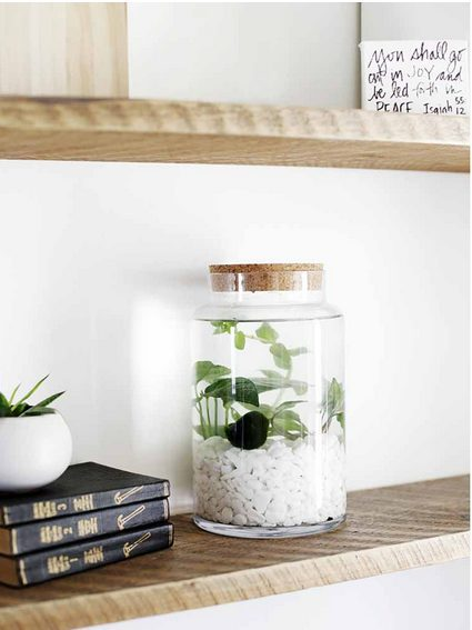 Do you need tips on indoor plants decor ideas? What are the best low maintenance indoor plants, indoor plants styling, best indoor plants decor living room. Indoor plant stands, indoor plant walls, indoor plnt display ideas. From tall, small and large indoor plants decor and styling. #indoorplants #indoorplantsdecor #indoorplantstyling #indoorplantsdecorlivingroom